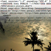 HTML code and palm trees
