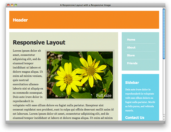 Screenshot of responsive layout with regular responsive image