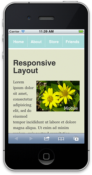 Screenshot of responsive layout with mobile responsive image