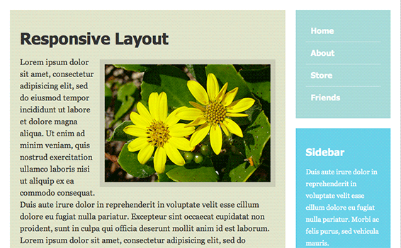 Screenshot of responsive layout with large image