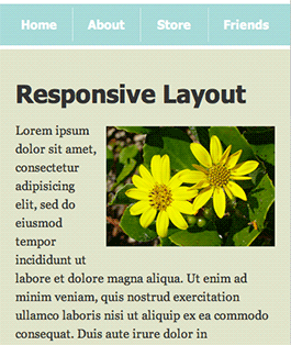 Screenshot of responsive layout with scaled-down image