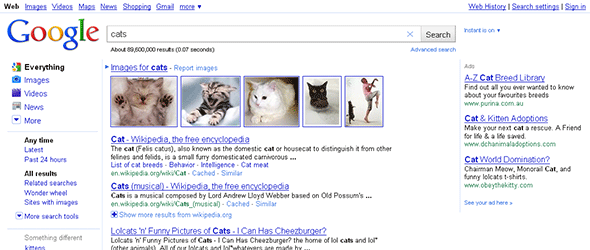 Google in Firefox 3.6