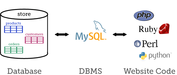 Diagram of database, DBMS and website code