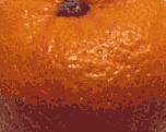 16-colour PNG-8 (6481 bytes)