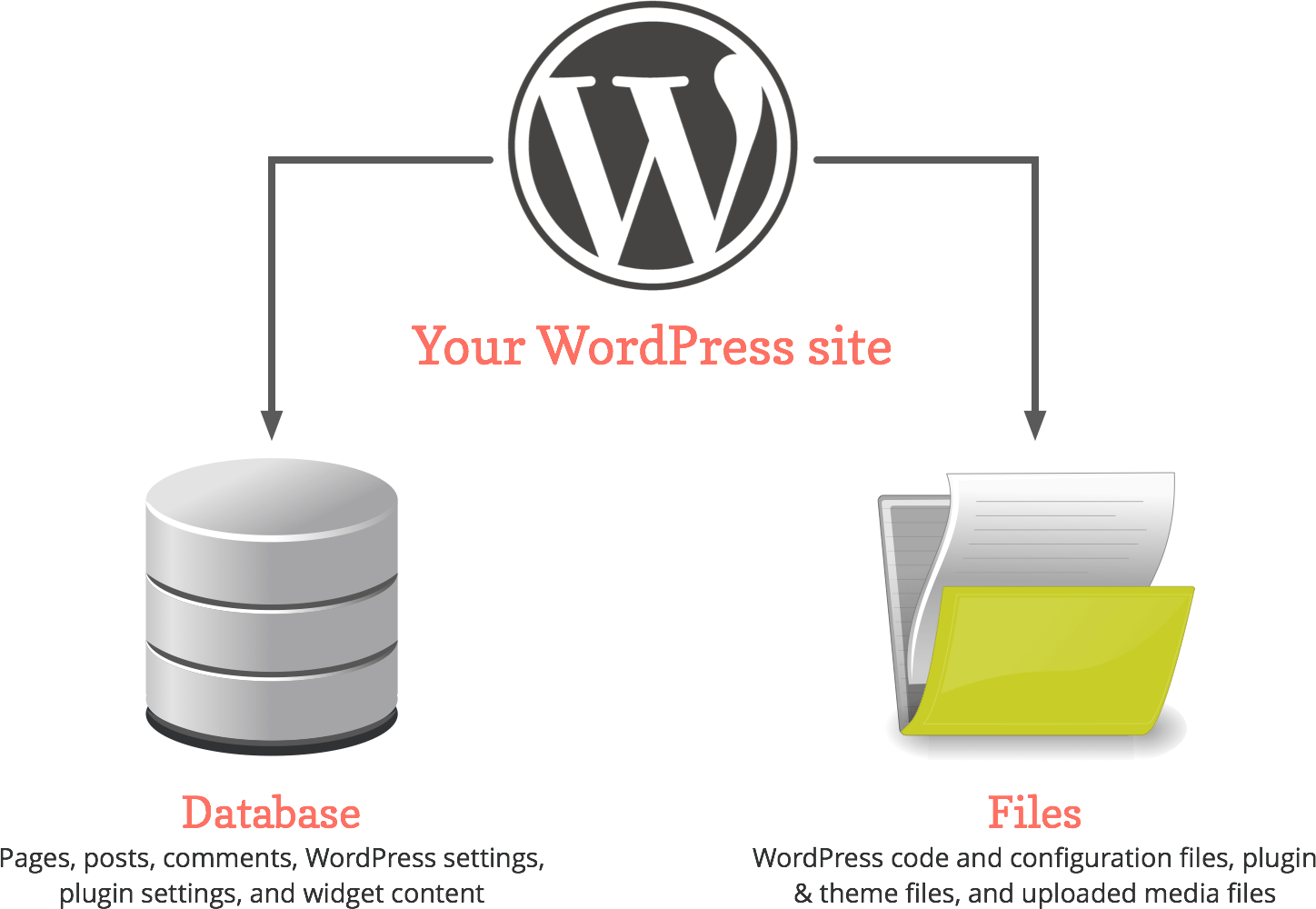 WordPress database and files